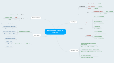 Mind Map: Réunion de la comité de direction