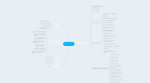 Mind Map: Projet à retenir