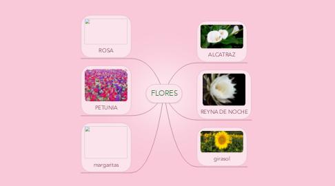 Mind Map: FLORES
