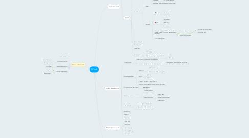 Mind Map: W.Tech