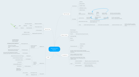 Mind Map: Sensorimotor System
