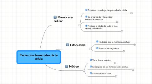Mind Map: Partes fundamentales de la célula