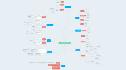 Mind Map: The Endocrine System