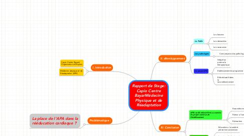Mind Map: Rapport de Stage: Capio Centre BayarMédecine Physique et de Réadaptation