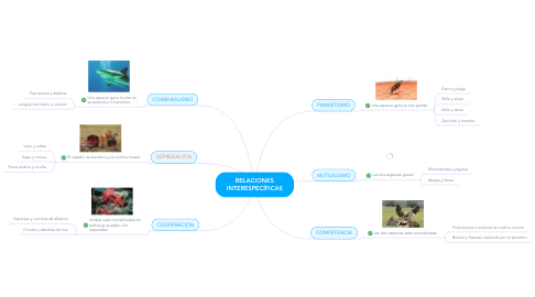 Mind Map: RELACIONES INTERESPECÍFICAS