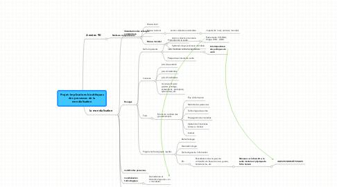 Mind Map: Projet: Implications bioéthiques des processus de la mondialisation