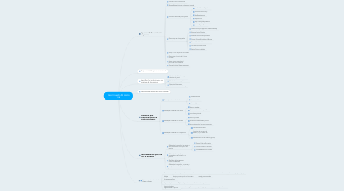 Mind Map: Determinación del precio final