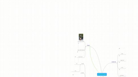 Mind Map: Темнохвойный лес