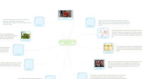 Mind Map: CARACTERISTICAS DE LOS SERES VIVOS