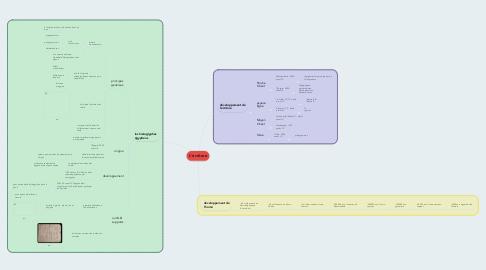 Mind Map: L'écriture