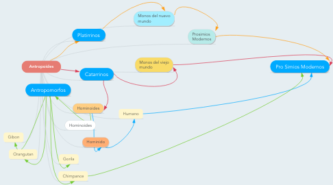 Mind Map: Antropoides