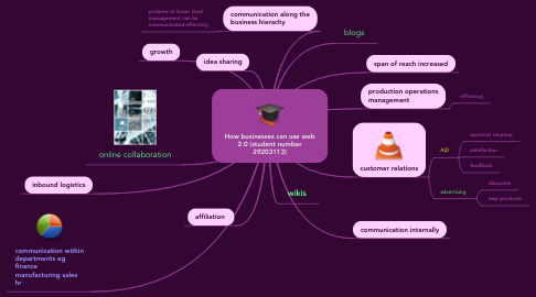 Mind Map: How businesses can use web 2.0 (student number 29203113)