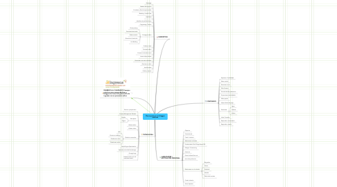 Mind Map: Claves para ser un blogger
