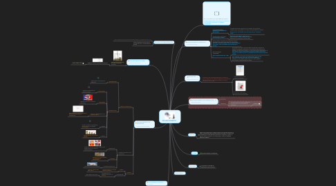 Mind Map: APALANCAMIENTO