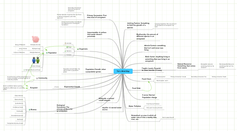 Mind Map: Tim's Mind Map
