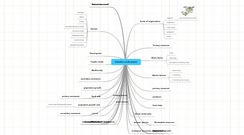 Mind Map: brandons vocab project