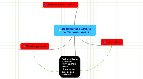 Mind Map: Stage Master 1 IGAPAS Centre Capio Bayard