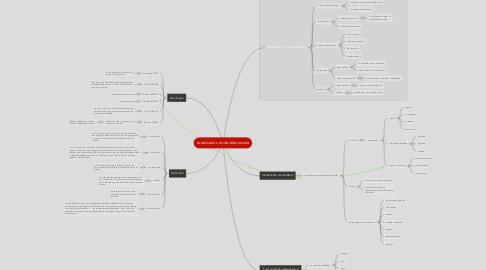 Mind Map: socialisation et identité sociale