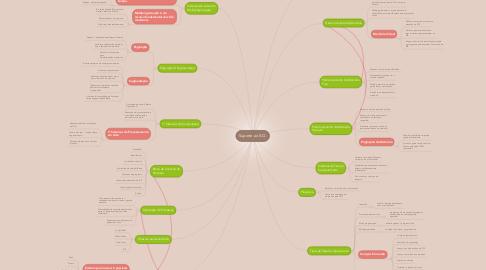 Mind Map: Suporte ao S.O.