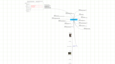 Mind Map: Dichotmous Key Brainstorming on bears (Ursinae)