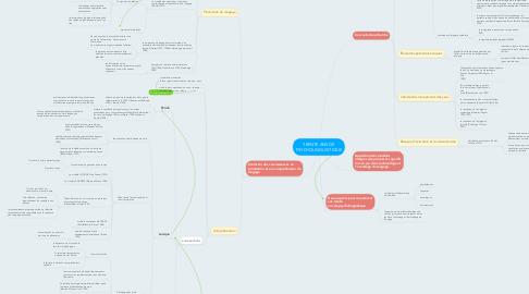Mind Map: TRENTE ANS DE PSYCHOLINGUISTIQUE