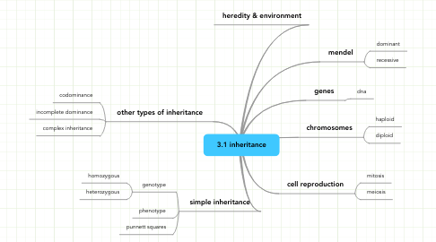 Mind Map: 3.1 inheritance