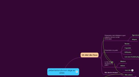 Mind Map: présentation de mon stage au CDSA