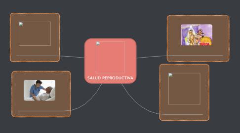 Mind Map: SALUD REPRODUCTIVA