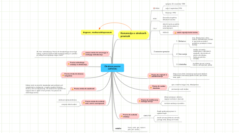 Mind Map: Otrokove pravice(USTAVA)