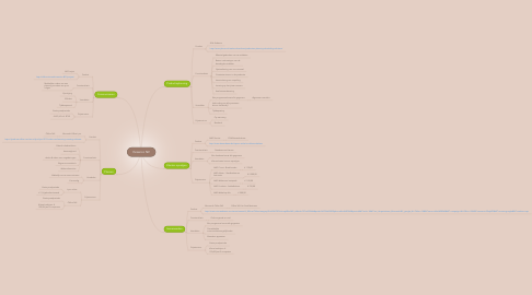 Mind Map: Greenco NV