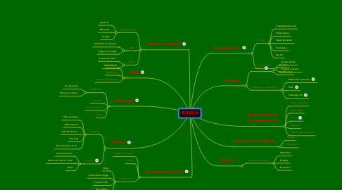 Mind Map: TD TICE L3