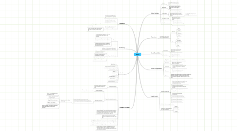 Mind Map: Megan