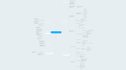 Mind Map: Conclusies interviews experts