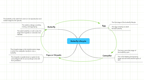 Mind Map: Butterfly Lifecycle