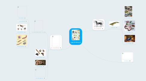 Mind Map: Les Animaux