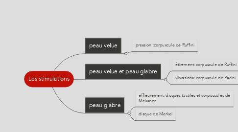 Mind Map: Les stimulations