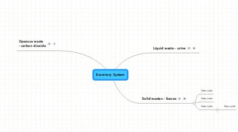 Mind Map: Excretory System