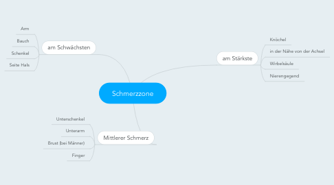 Mind Map: Schmerzzone