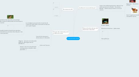 Mind Map: La reproduction sexuée