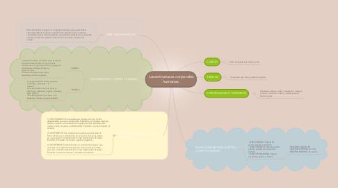 Mind Map: Las estructuras corporales humanas.