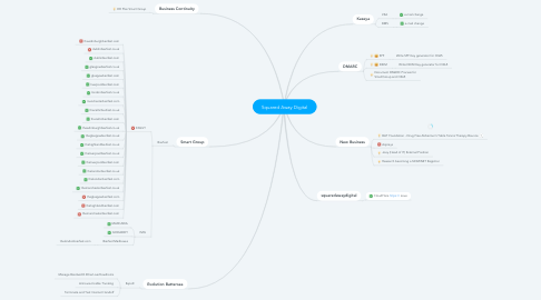 Mind Map: Squared Away Digital