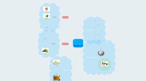 Mind Map: อาหารหลัก 5  หมู่