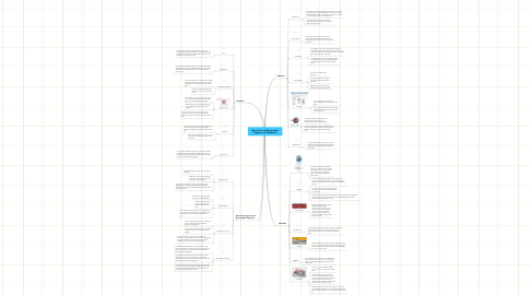 Mind Map: Microsoft and Macromedia Programs and Websites