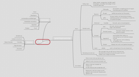 Mind Map: Puberteit