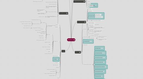 Mind Map: Mininterior