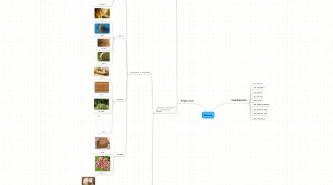Mind Map: Волокна