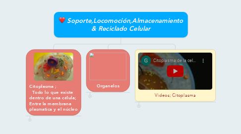 Mind Map: Soporte,Locomoción,Almacenamiento & Reciclado Celular