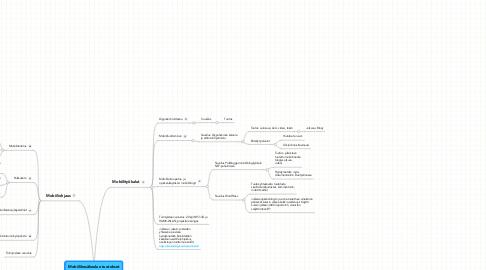 Mind Map: Mobiilikesäkoulun tuotokset