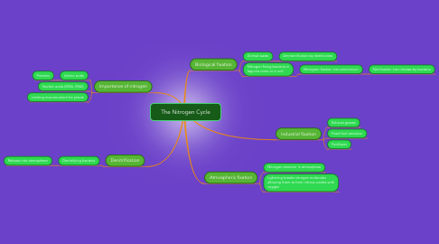 Mind Map: The Nitrogen Cycle