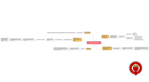 Mind Map: The media focus too much on opinions,rather than facts. Do you agree?